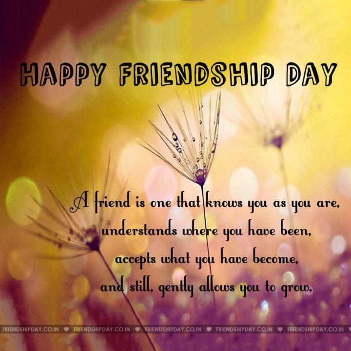 National best friend day 2016 | Happy Friendship Day ...